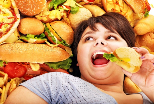 Being Fat Hinders the Brain